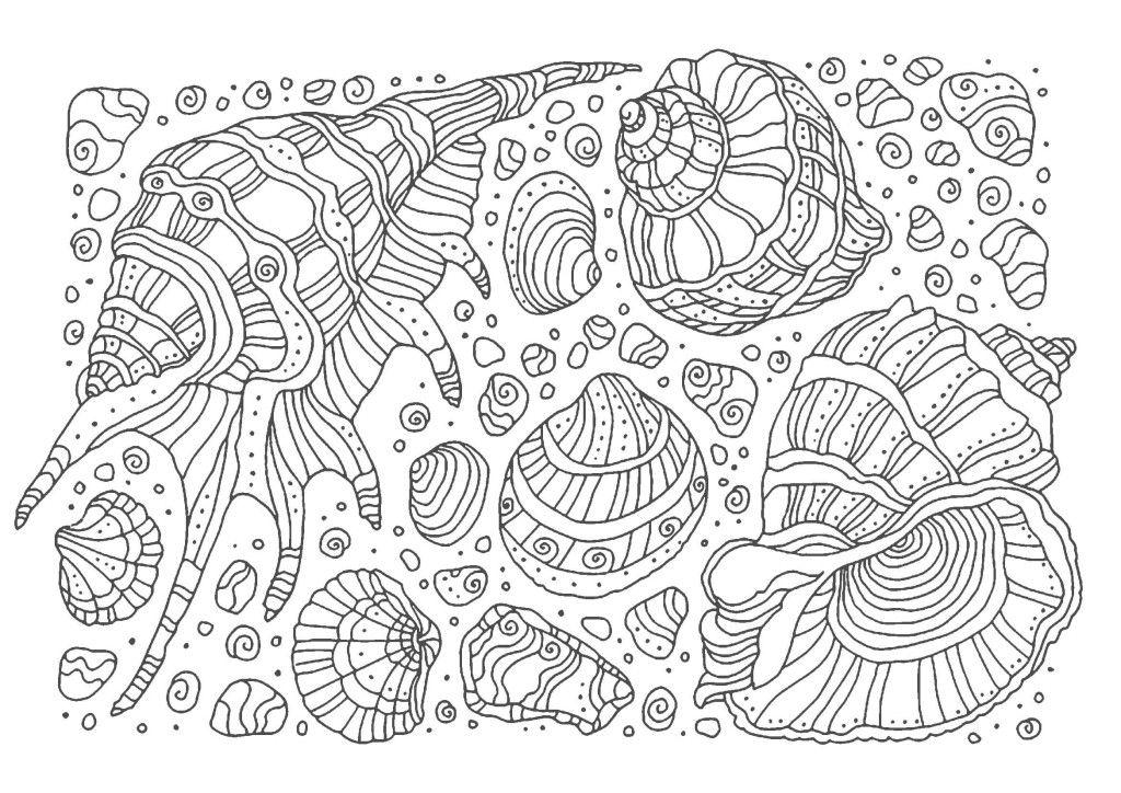 大人の塗り絵 貝殻 無料印刷 塗り絵 塗り絵 かわいい 印刷