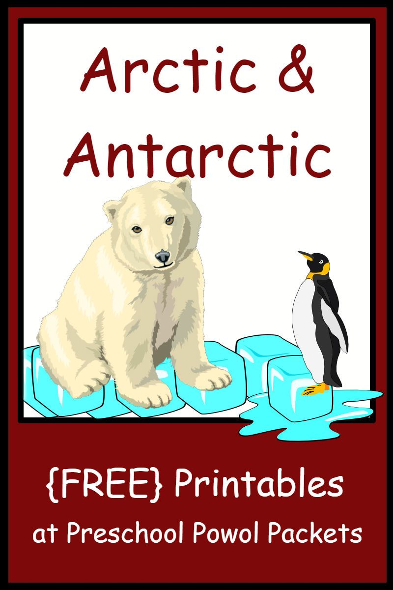 Arctic Antarctic Themed Free Preschool Printables Preschool Printables Winter Animals Preschool Free Preschool Printables [ 1200 x 800 Pixel ]