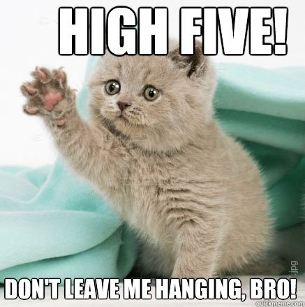 Holding Your Hand Near A Person S Face For The Longest Time Before They Realize What You Re Doing Kittens Cutest Funny Cat Memes Kittens And Puppies
