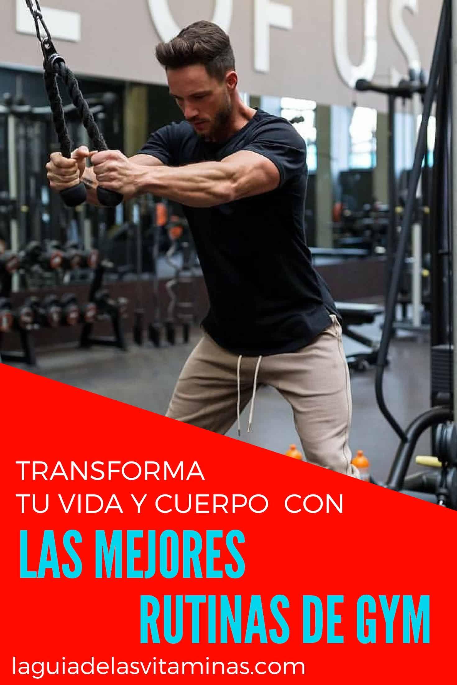 Las 5 Mejores Rutinas Para Quemar Grasa En El Gimnasio Para Hombres La Guía De Las Vitaminas Fun Workouts Gym Men Body Training
