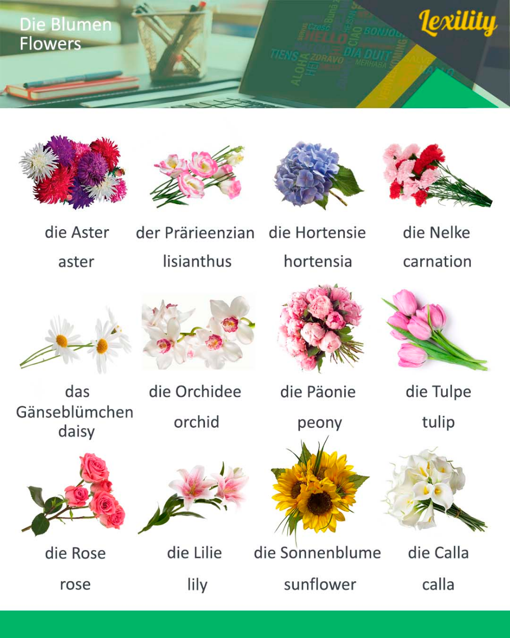 Flowers In German Chinese Language Learning Foreign Language Learning Mandarin Chinese Learning