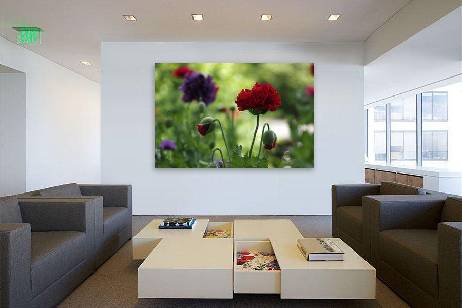 Kauf 'Verträumtes Land Sommerblumen im Garten' von Tanja Riedel auf Leinwand, Alu-Dibond, (gerahmten) Postern und Xpozer.