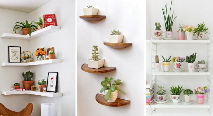Ante la duda agreg una planta 10 ideas para decorar tu for Decorar una casa con poco dinero