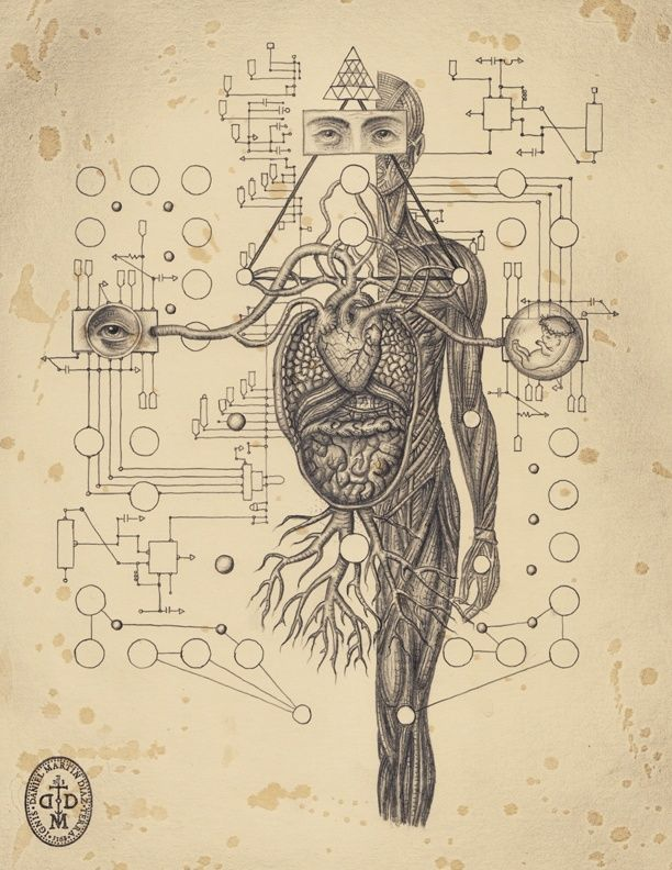 Drawings from Soul of Science, a book on the mysteries of scientific ...