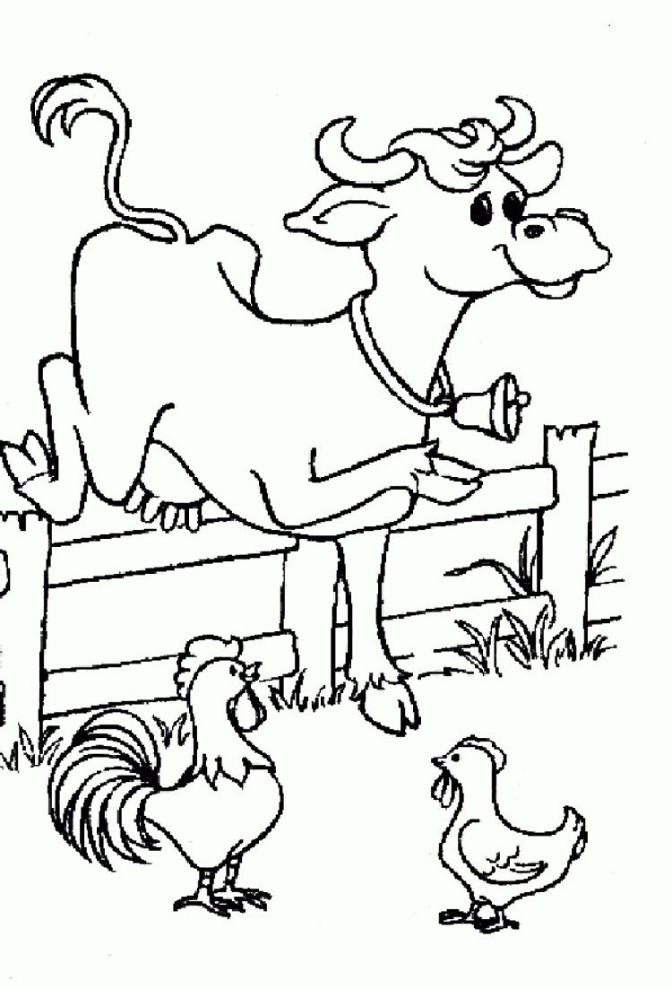 Cow Coloring Pages Free Printable Amazing Cow Chicken Free Colouring