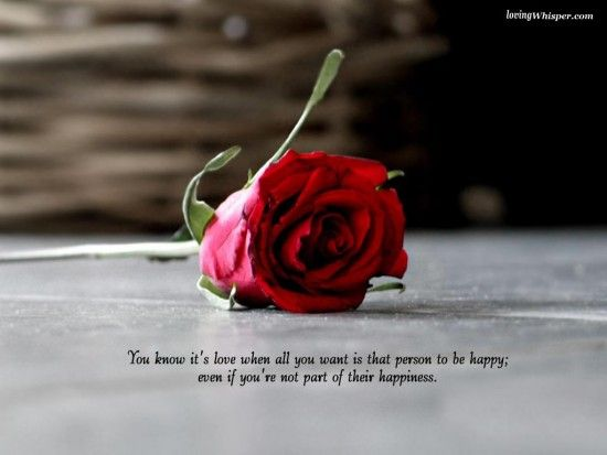 23 Rose Quotes Inspirational Quotes Love Quotes Inspirational