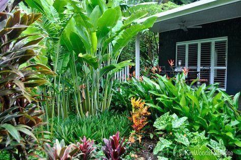 Tabu: Tropical Paradise in Cairns, Queensland -,  #bestgardendesign #diygardendecordollarstores #diygardenflower #diynaturalplaygrounds #gardenlandscaping #Tropical #Paradise
