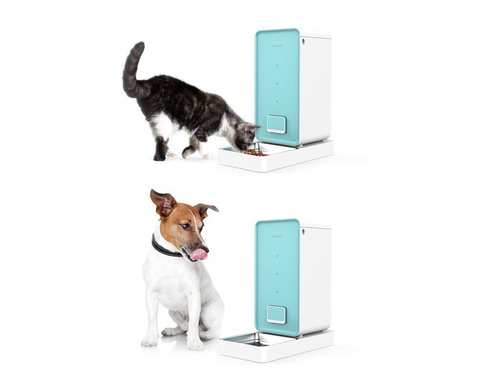 Petkit Smart Feeder Automatic Pet Feeder For Cats And Dogsa Never Stuck Feeder Double Fresh Lock System 5 9l Pet Feeder Automatic Cat Feeder Pet Food Dispenser