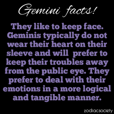 gemini what are they like