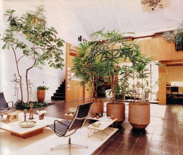 Pflanzen im Badezimmer Hinweise für die richtige Wahl und Pflege - pflanzen für badezimmer