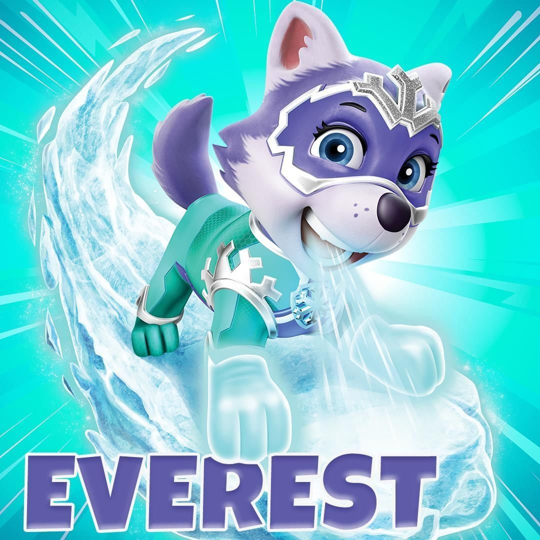Paw Patrol On Instagram Mighty Everest She Can Freeze Anything With Her Icy Breath She Can Crea Everest Paw Patrol Paw Patrol Pups Paw Patrol Super Pup
