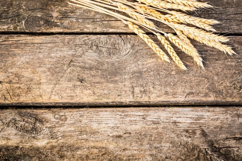 Autumn wheat on old wood texture Stock Photo , #Affiliate, #wood, #wheat, #Autumn, #Photo #AD #woodtexturebackground