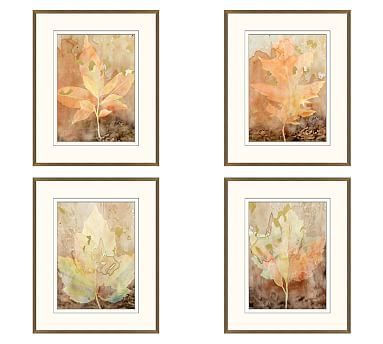 Autumn Leaves Framed Prints, Set of 4, 17 x 21\