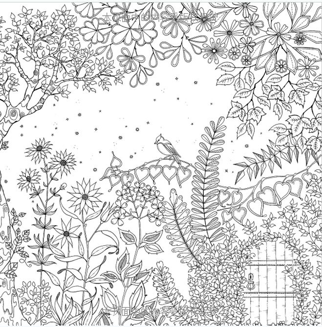 Jardin Secret Colouring Book