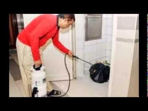 رش مبيد النمل الابيض 0550070601 شركة الأوائل Home Appliances Vacuum Vacuum Cleaner