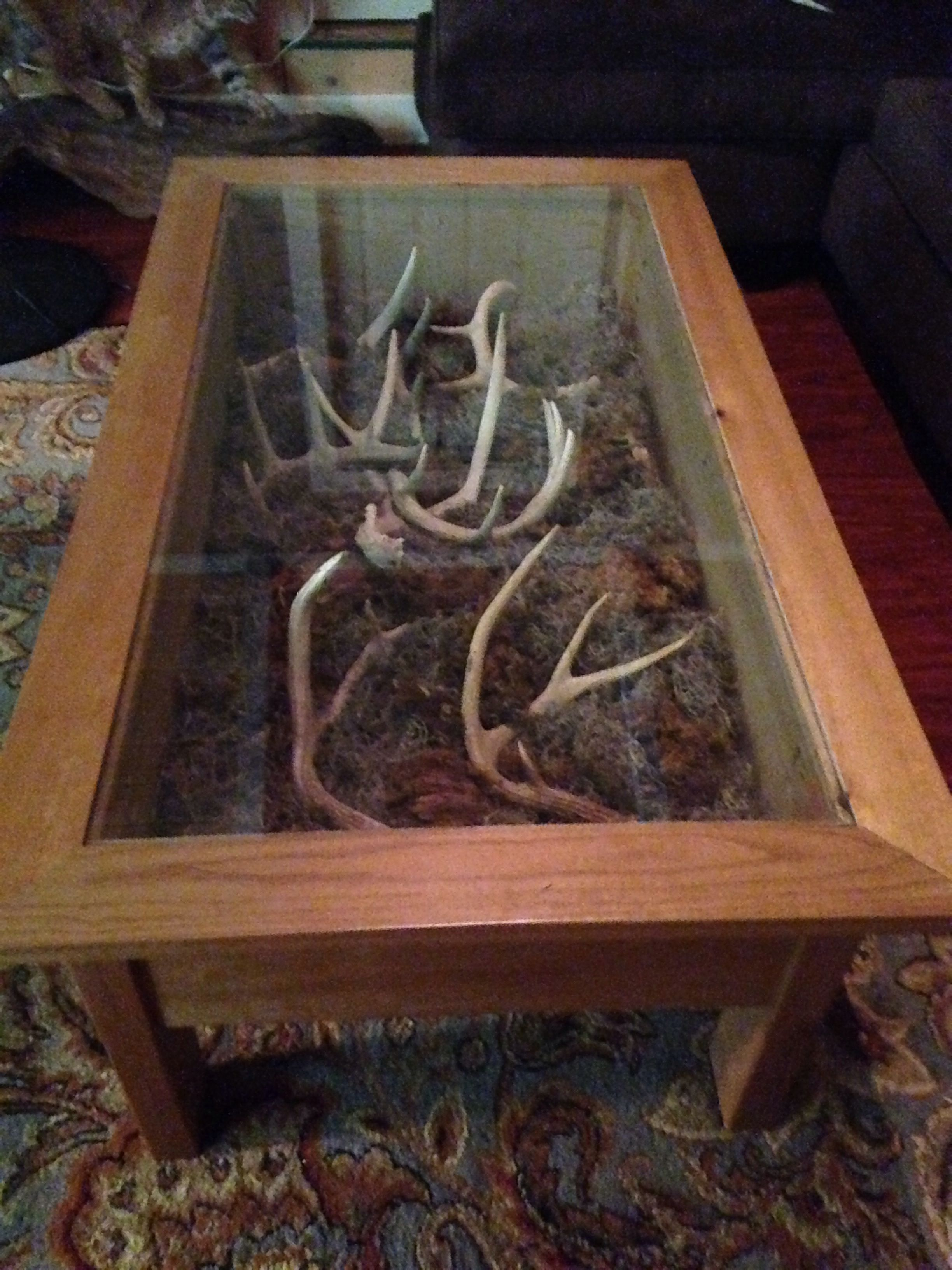 Deer Shed Display Coffee Table Hunting Cabin Decor Deer Hunting