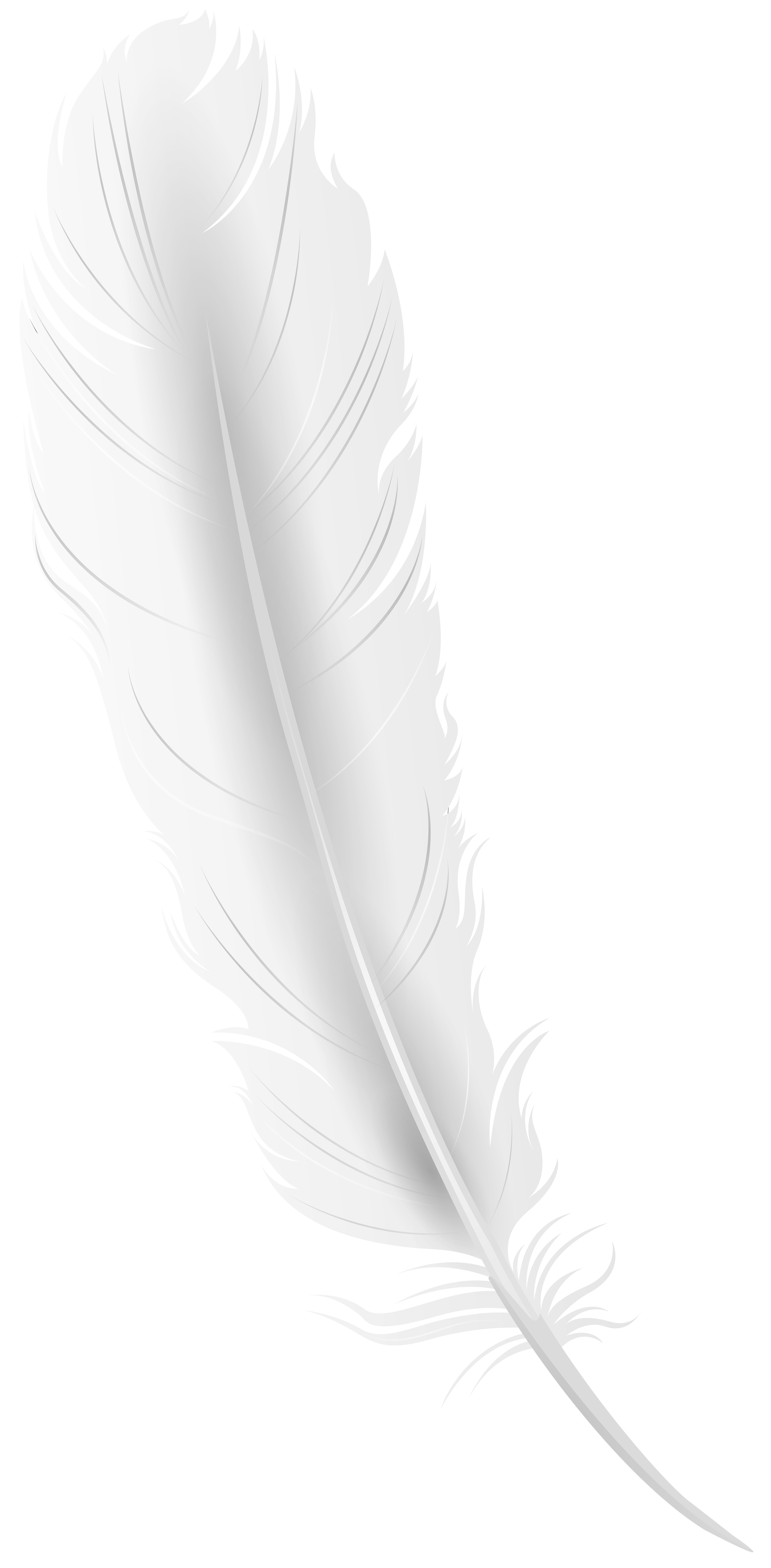 White Feather Png Clip Art Image Gallery Yopriceville High Quality Images And Transparent Png Free Clipart Clip Art White Feathers Art Images