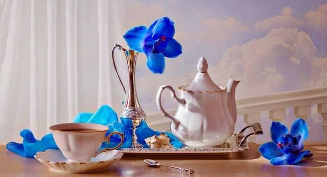 Resultado de imagem para синяя орхидея
