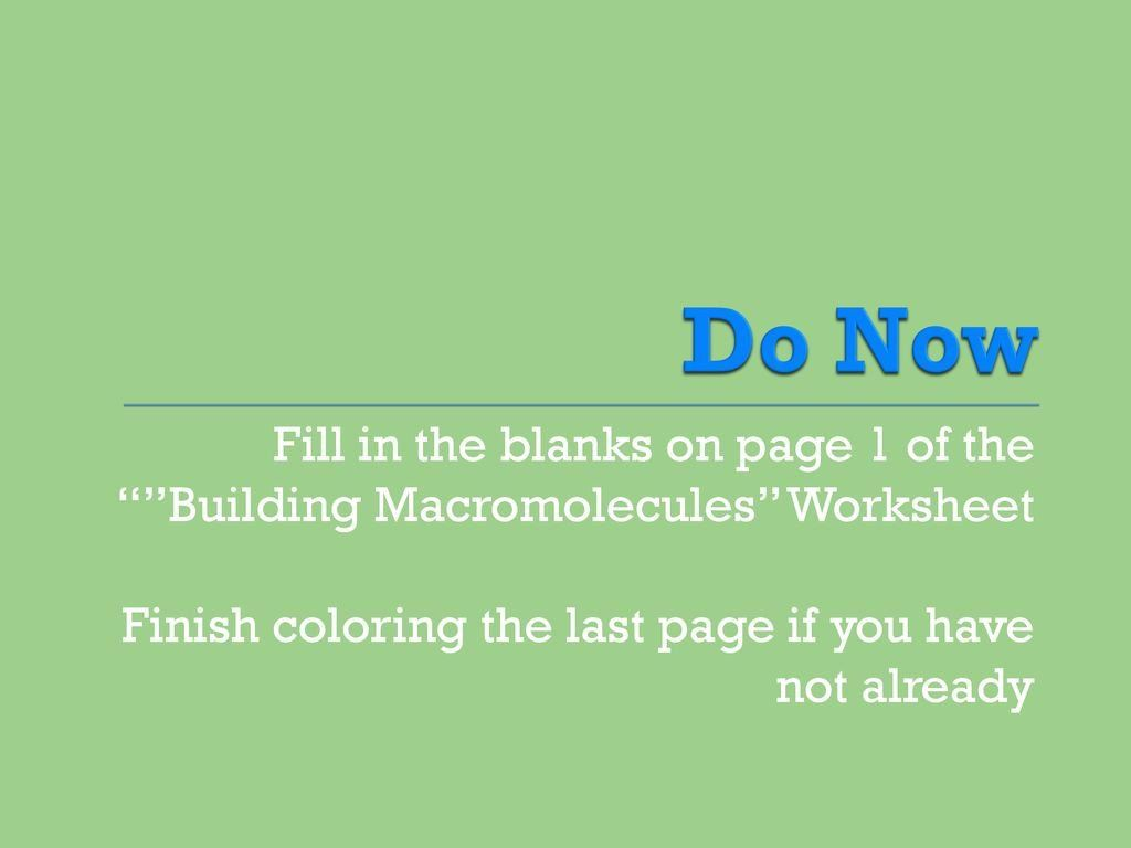 Building Macromolecules Worksheet Answers Wel E Miss
