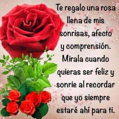 una rosa para una amiga especial | Frases de rosas, Frases ...