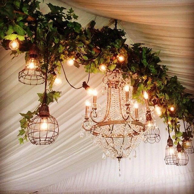 Another Lushious Marquee Boho Lighting With Simple Green