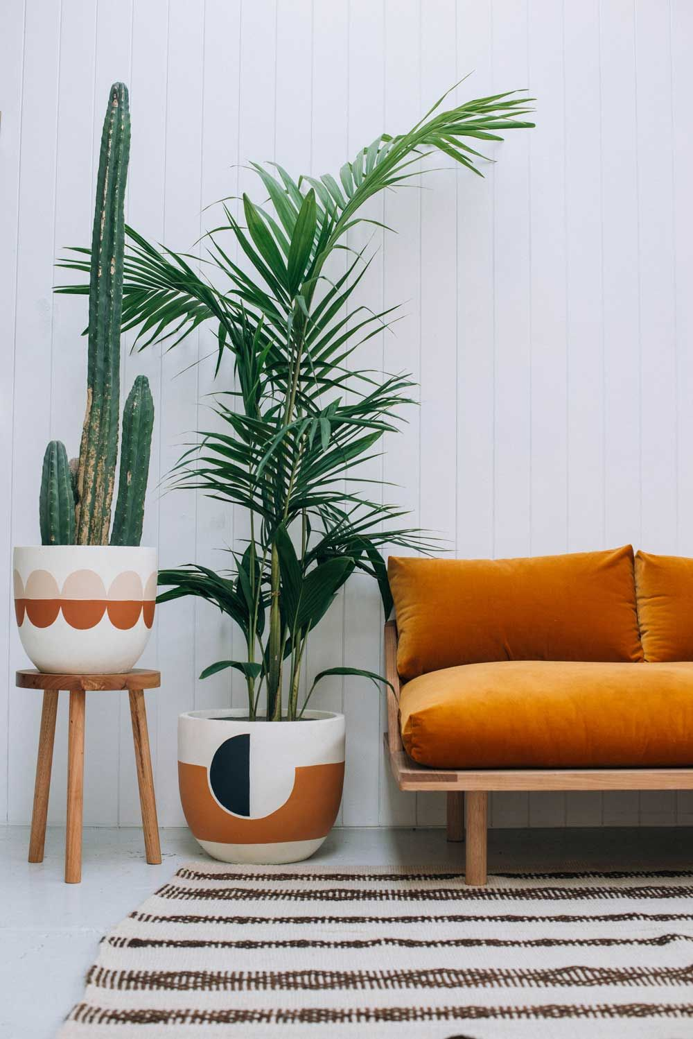 Plante D'interieur Orange Plants Botanical Retro Home Decor Living Room Decor Et