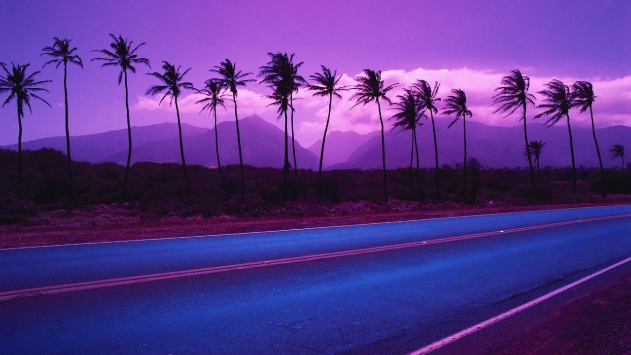 Aesthetic Wallpaper Full Hd | Purple sky, Palm trees ...