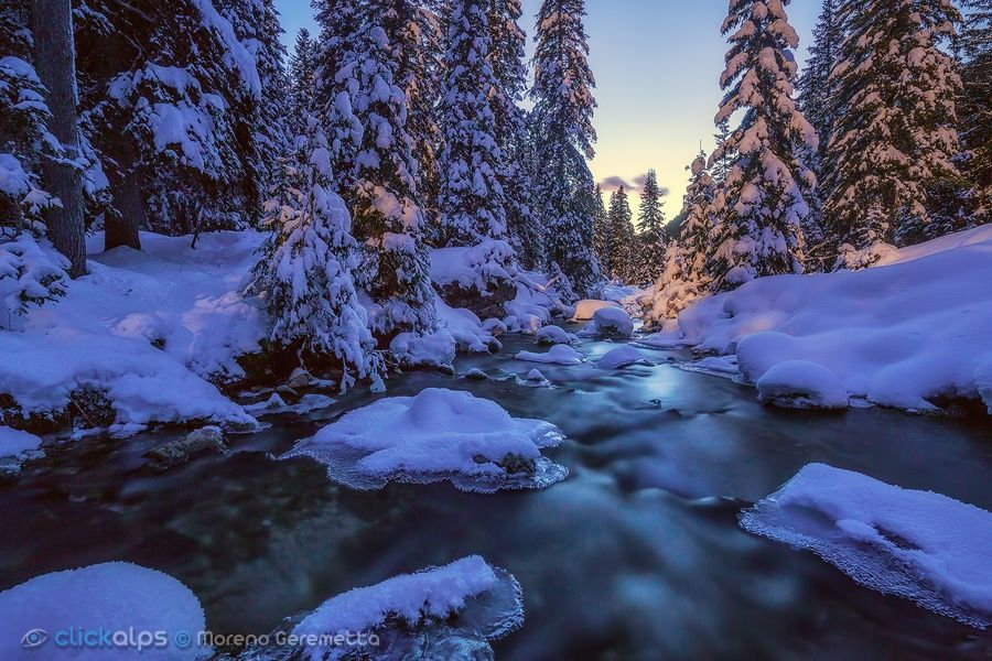 The beauty of the cold by Moreno Geremetta on 500px