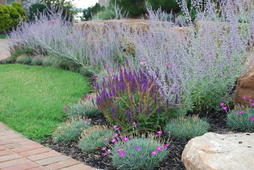 38 Glorious Japanese Garden Ideas: Glorious!!! Russian Sage (Perovskia Atriplicifolia