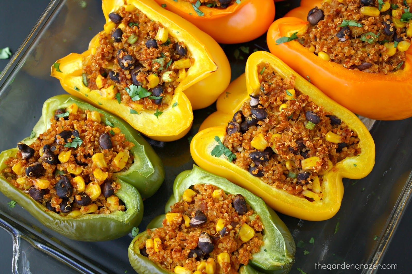 Mexican Quinoa Stuffed Peppers Vegan Gf The Garden Grazer Recipe Stuffed Peppers Cooking Recipes Mexican Food Recipes