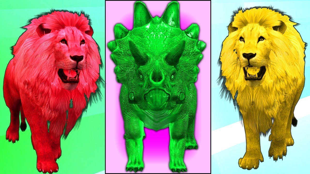 Colors Lions Finger Family | Kids / Children Finger Family Nursery ...