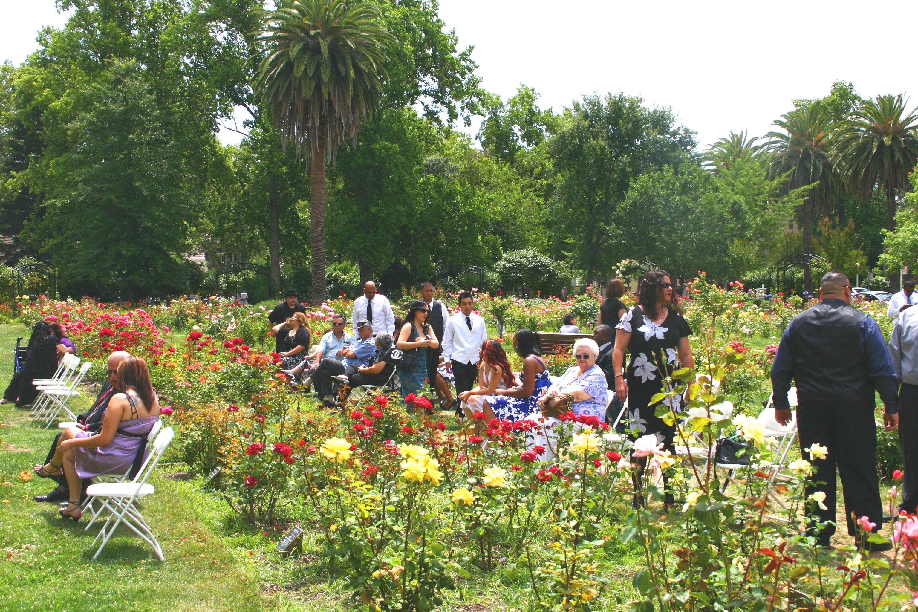 Mckinley Park Rose Garden Sacramento Ca Garden Drawing