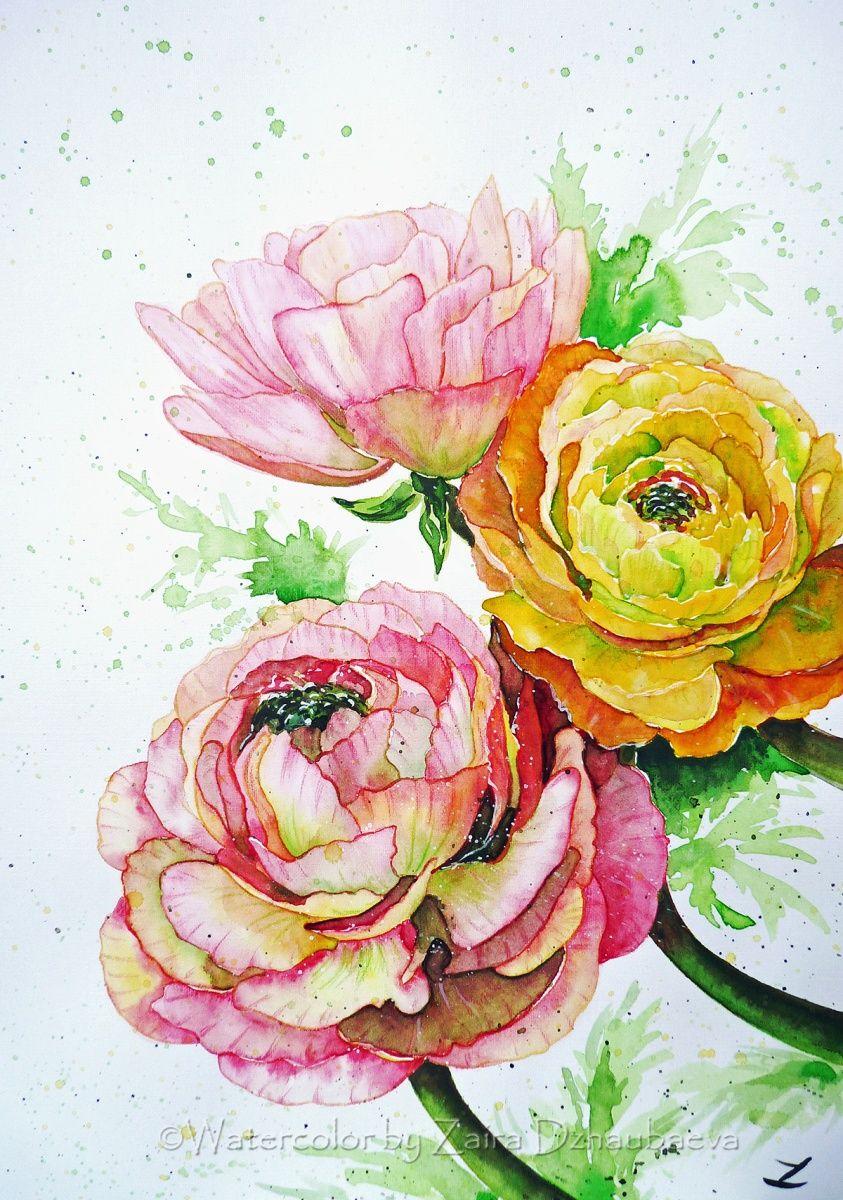 Ranunculus Flowers In 2020 Flower Art Watercolor Flowers