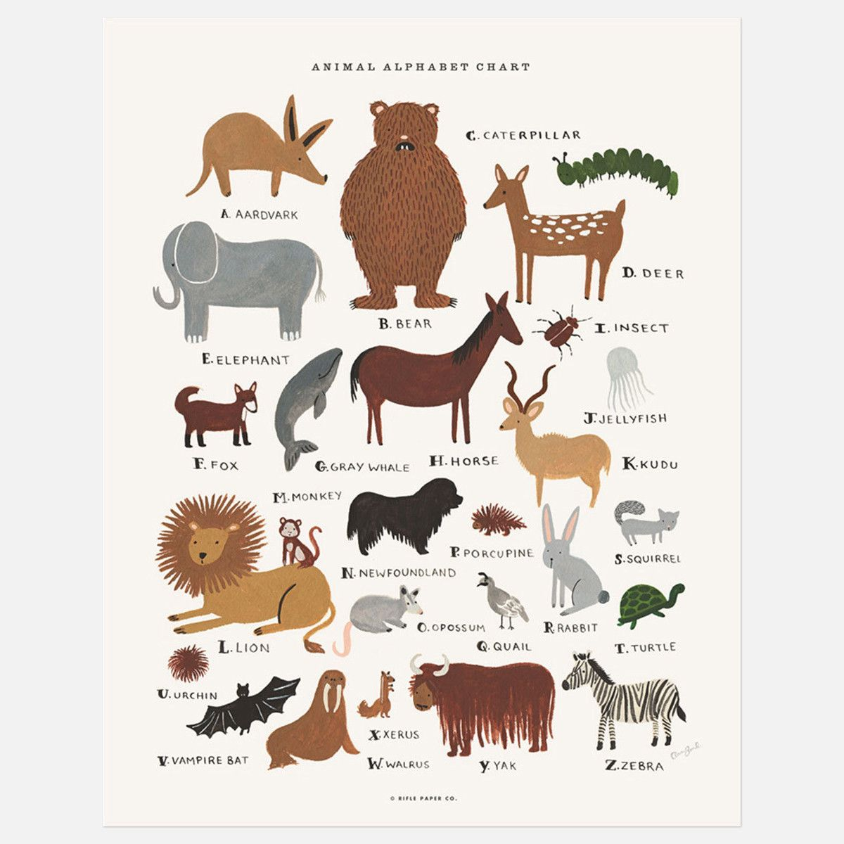 Beautiful Animal Chart For Kids Animal Alphabet Alphabet Print Alphabet Charts