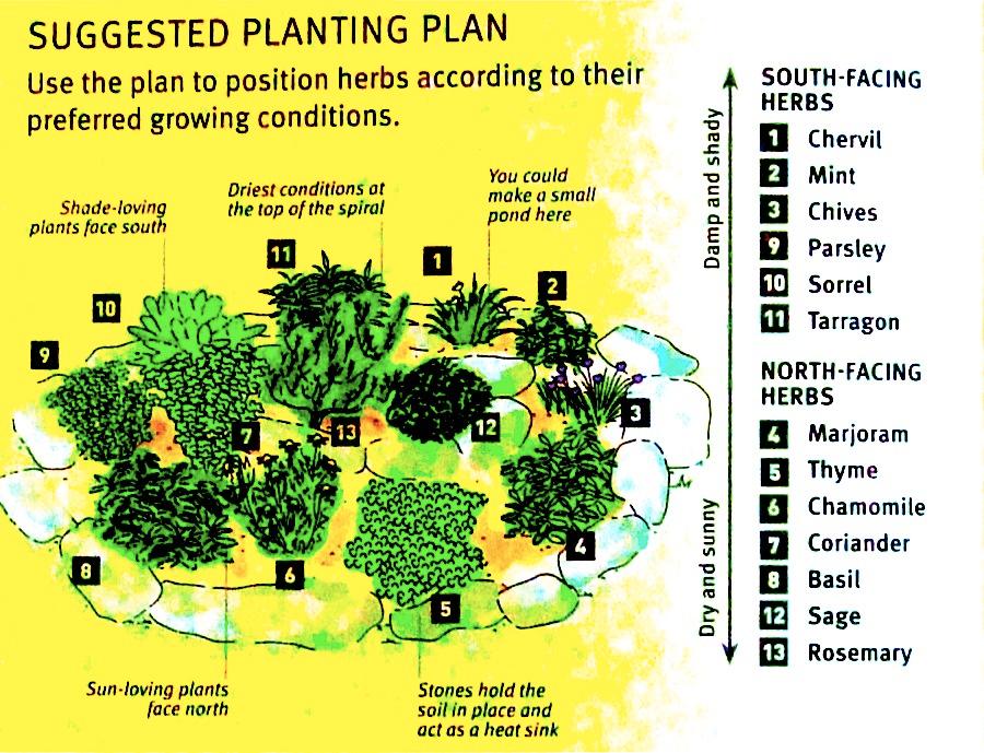 Build Your Own Herb Spiral Herb Spiral Herb Garden Design Garden Ideas Uk