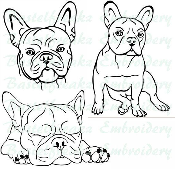 Stickdatei Bully 10x10cm French Bulldog Art French Bulldog Drawing Dog Drawing
