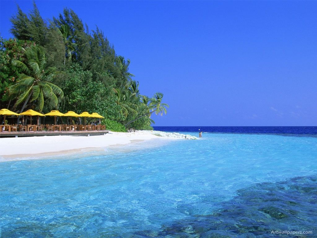 Google Image Result For Http Www Zastavki Com Pictures 1024x768 Nature Islands 004042 Jpg Beach Wallpaper Florida Vacation Maldives Beach