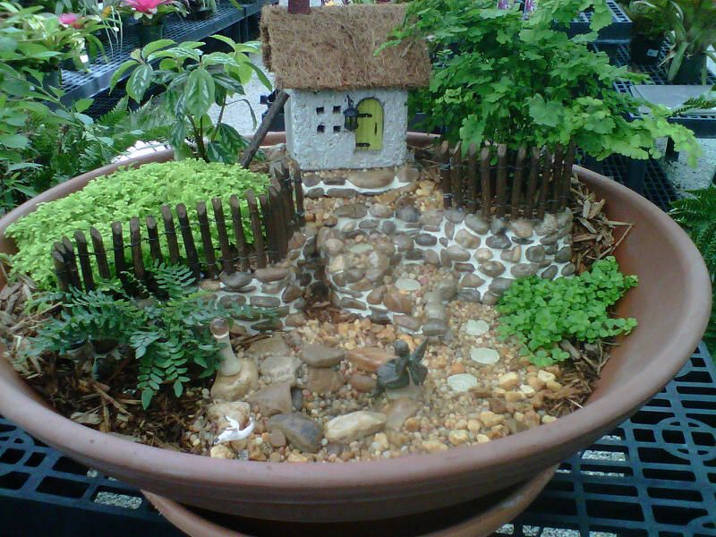 Driftwood Garden Center Located In Estero Florida Carries A Full Line Of  Our Miniature Fairy Garden