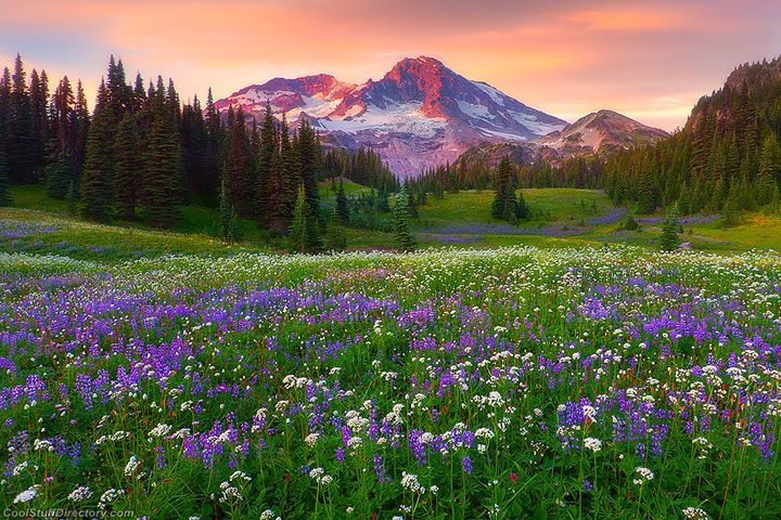 Natural landscape photographs by kevin mcneal beautiful for Natural landscape