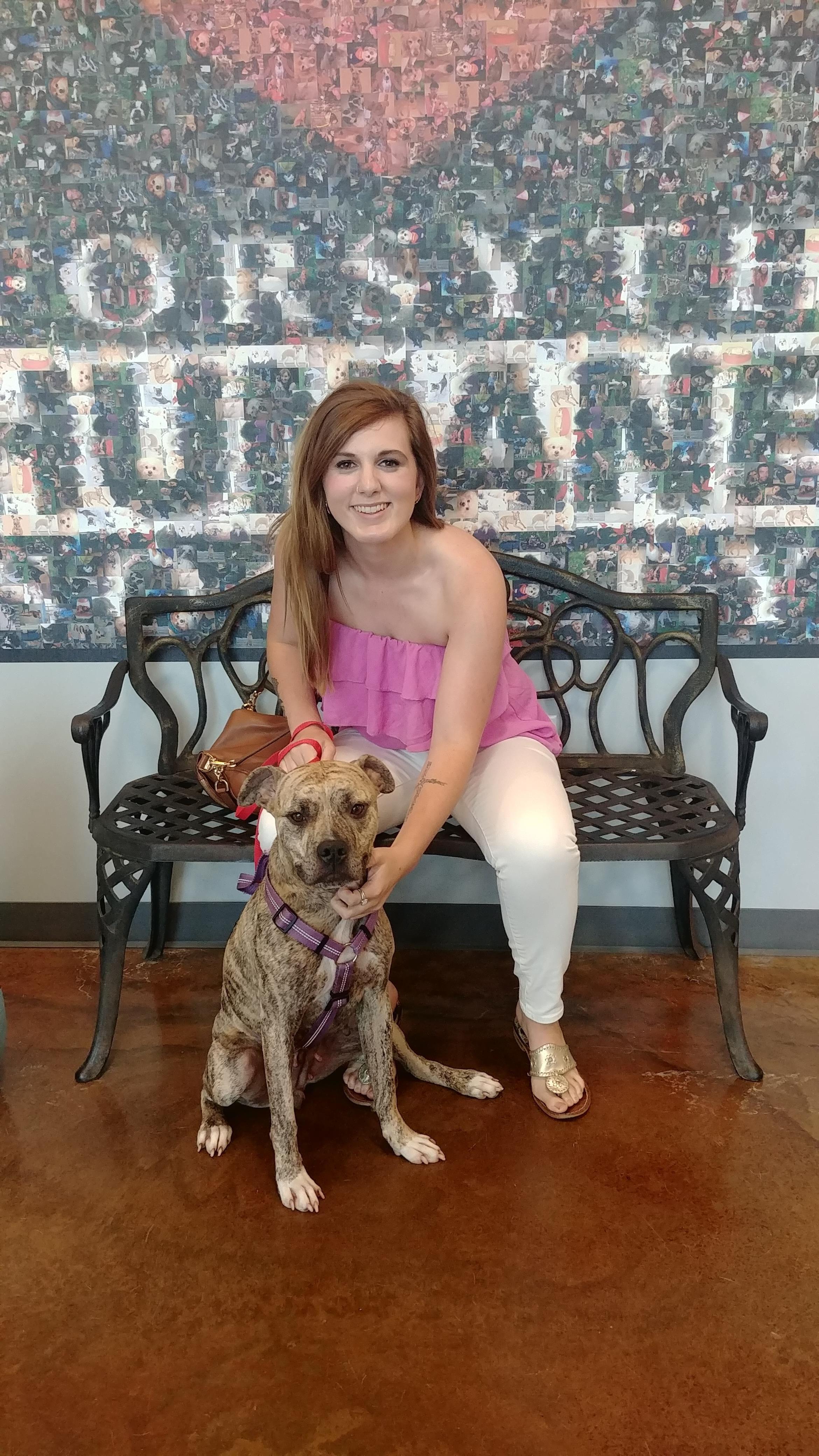 Aphrodite was adopted cat adoption pet adoption dog