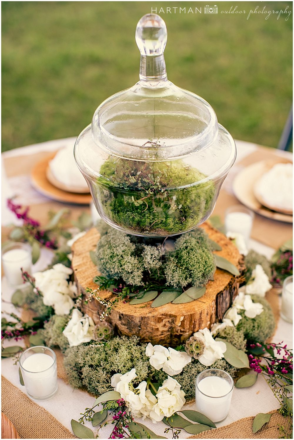 Moss Terrarium Centerpieces On Tree Trunk Slices Raeford Outdoor Filipino Wedding Reception DIY Backyard