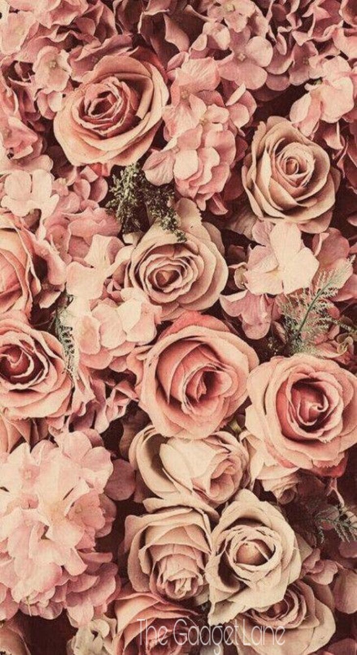 Floral Wallpaper Iphone Android Vintage Flower Backgrounds Flower Background Wallpaper Flower Background Iphone