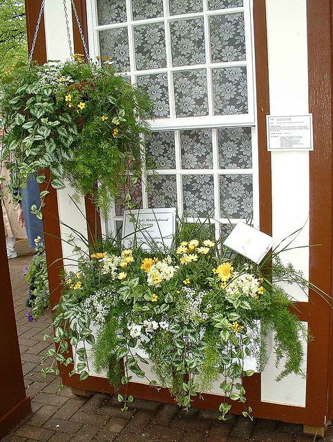 Window Box Way 5 Window boxes, Container flowers, Window