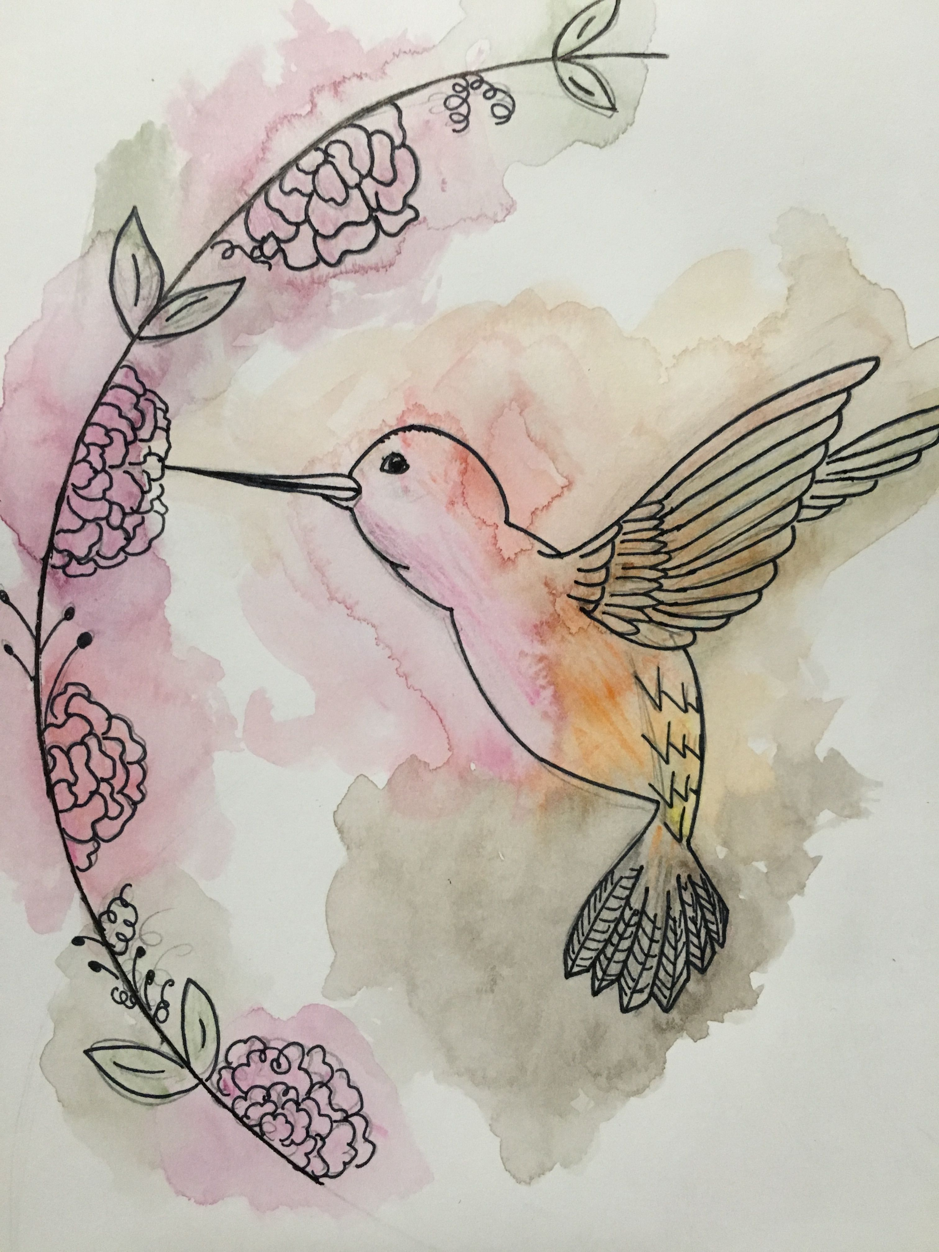 Watercolor Hummingbird Made With Water Color Pencils No Mess And