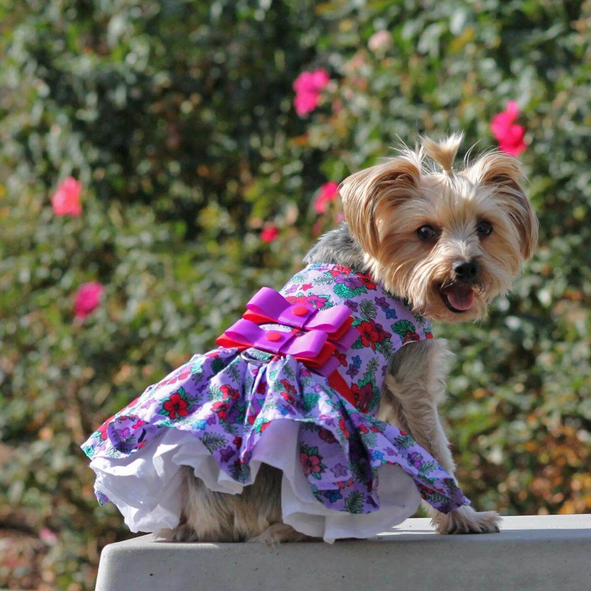 4e5b48214a02 If flower patterns are your thing, this Purple & Red Floral dog dress may  be for you. The sleeveless bodice is accented with two matching ribbons.
