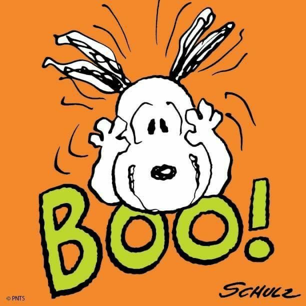 Pin By Teresa Jonovich On Meu Amigo Charlie Brown Snoopy Halloween Snoopy Funny Snoopy Quotes