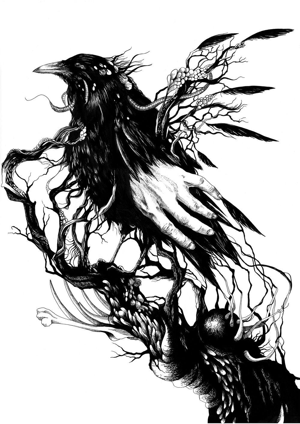 Dessin de plume pour tatouage galerie tatouage - Tatouage corbeau signification ...