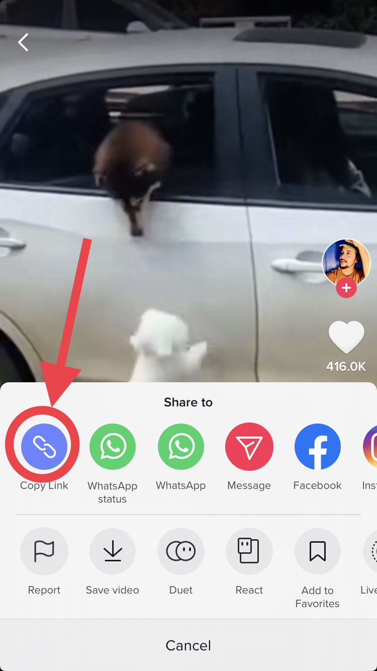 Tiktok Repost Without Watermark Admob Onesignal Ios Splash Screen Save Video Whatsapp Message