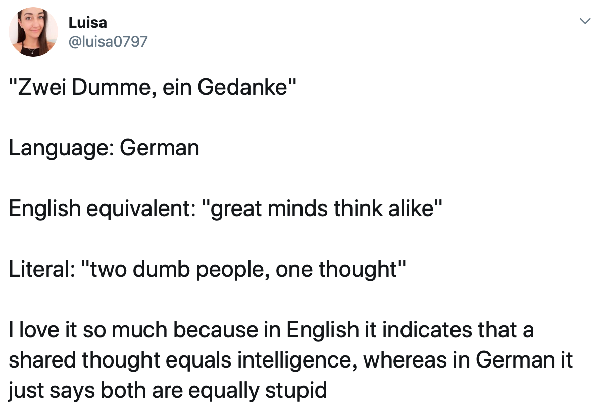 20 People Share Their Favorite Non English Phrases And Their Literal Meanings Dumb People English Phrases Great Minds Think Alike