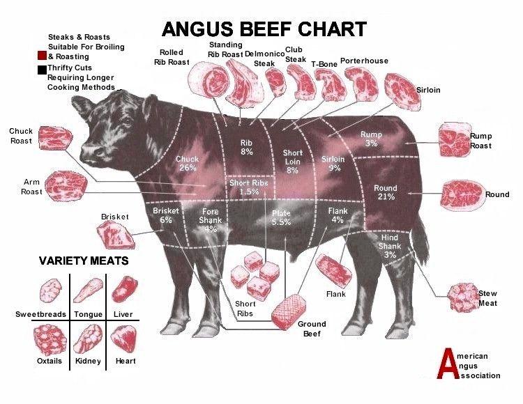 Beef Cut Chart